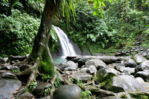 national-park-guadeloupe