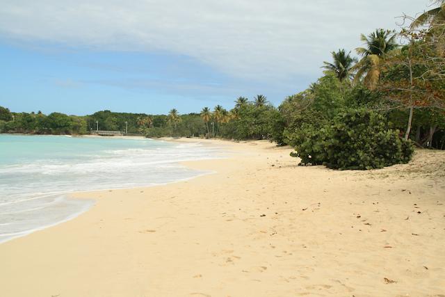 Anse-Canot-Beach-marie-galante-guadeloupe