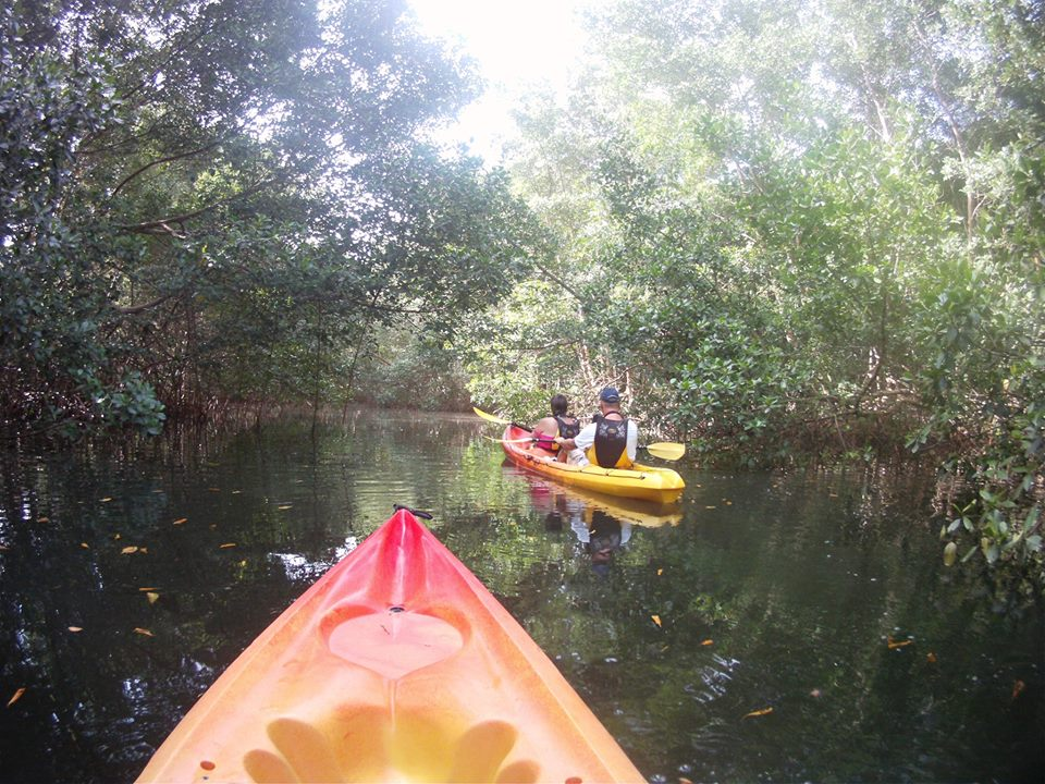 ID Kayak