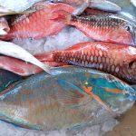 Fish Market St François